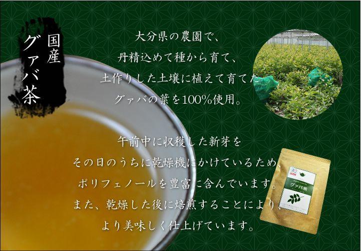 国産グァバ茶とあh