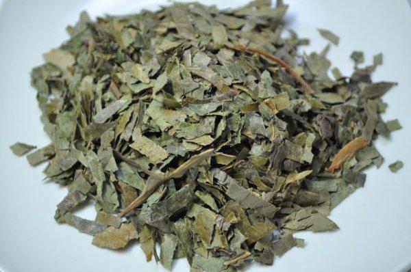 画像1: 柿の葉茶 ビタミンCやミネラルが豊富 (1)